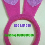 BDG-SAM-030